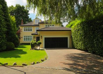 Thumbnail 5 bed detached house to rent in Henley Drive, Coombe