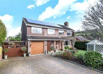 Thumbnail 4 bed detached house for sale in Saxon Rise, Winterborne Stickland, Blandford Forum