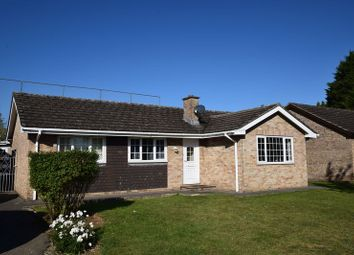 Thumbnail 4 bed bungalow to rent in Begbroke Crescent, Begbroke, Kidlington