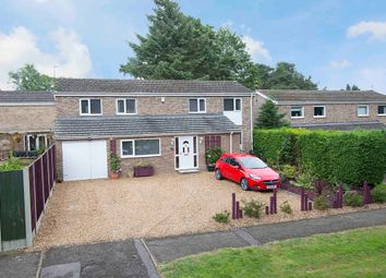 Thumbnail 4 bed detached house for sale in Dunedin Road, Corby