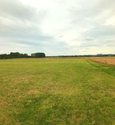 Thumbnail Farm for sale in Beechwood Avenue, Immingham