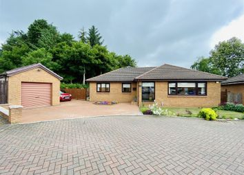 Thumbnail 4 bed detached house for sale in Naismith Court, Stonehouse, Larkhall