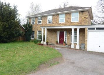 Thumbnail 4 bed detached house to rent in Avenue Road, Farnborough