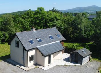 Thumbnail 3 bed detached house for sale in Carrig Beg, Bagenalstown, Carlow