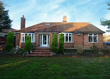 Thumbnail 4 bed detached house for sale in First Lane, South Cave, Brough