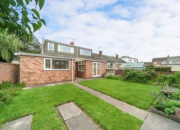 Thumbnail 3 bed bungalow to rent in Hastings Road, Thorngumbald, Hull
