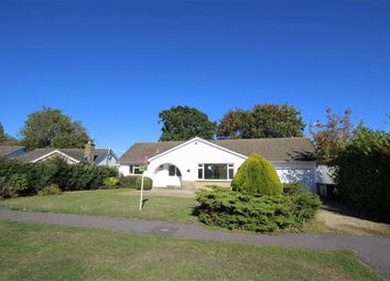 Thumbnail 3 bed detached bungalow for sale in Chestnut Springs, Lydiard Millicent, Wiltshire