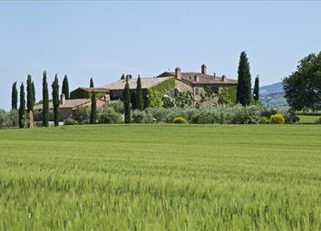 Thumbnail 13 bed farmhouse for sale in 53026 Pienza Province Of Siena, Italy