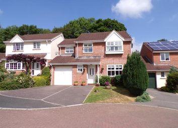 Thumbnail Property for sale in Honiton, Devon