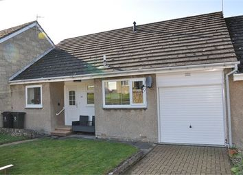 Thumbnail 2 bed bungalow for sale in Wentworth Park, Allendale