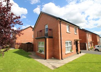 Thumbnail 3 bed detached house for sale in Fountain Crescent, Thaxton, Lisburn