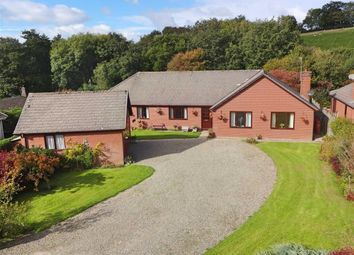 Thumbnail 4 bed bungalow for sale in Nantlas, Brooks Road, Tregynon, Newtown, Powys