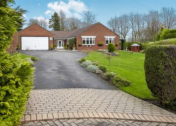 Thumbnail 3 bed detached bungalow for sale in Mount View, North Ferriby