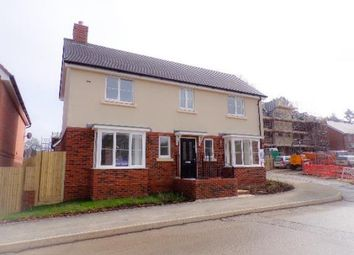 Thumbnail 4 bed detached house for sale in Liphook, Hampshire