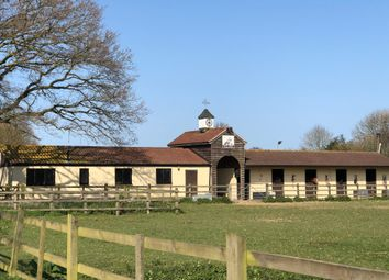 Thumbnail Equestrian property for sale in Wenham Road, Copdock, Ipswich