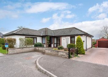 Thumbnail 3 bed detached house for sale in Cookston Crescent, Brechin, Angus