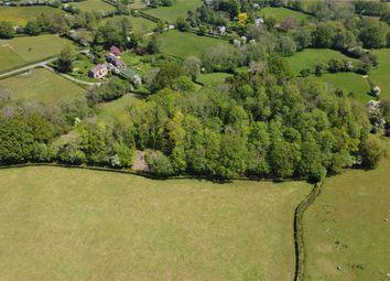 Newton St. Margarets, Hereford HR2, herefordshire property