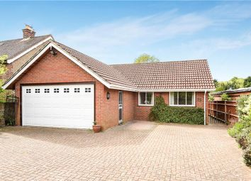 Thumbnail 4 bed detached bungalow for sale in Bousley Rise, Ottershaw, Chertsey