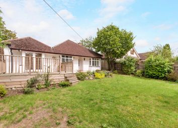 Thumbnail 4 bed bungalow to rent in Mount Pleasant, Effingham