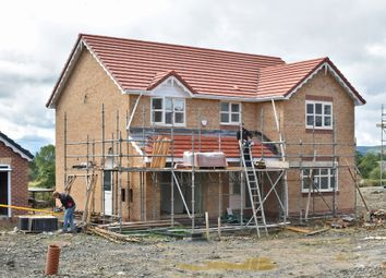 Thumbnail 4 bed detached house for sale in Plot 25 (Po 18) Dolydd Pentrosfa, Llandrindod Wells