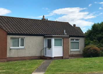 Thumbnail 2 bed semi-detached house to rent in Largo Road, St Andrews, Fife
