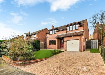 Thumbnail 4 bed detached house to rent in Lancaster Road, Sudbury