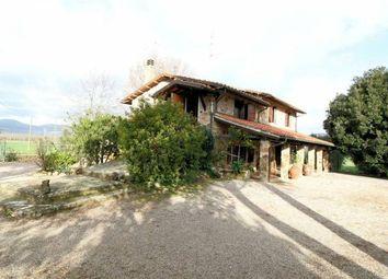 Thumbnail 2 bed property for sale in Farmhouse Castiglione, Castiglione, Tuscany, Italy