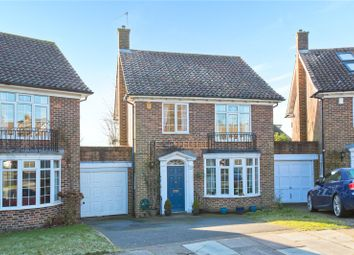 Thumbnail 4 bed detached house for sale in Whittingehame Gardens, Brighton, East Sussex