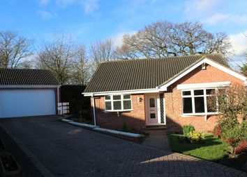 Thumbnail 2 bed detached bungalow to rent in Holme Croft, West Hallam