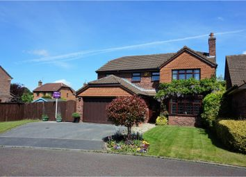 Thumbnail 4 bed detached house for sale in Berwyn Close, Little Sutton