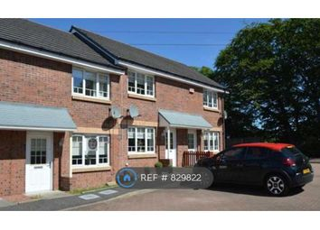 Thumbnail 2 bed terraced house to rent in Wilkie Drive, Motherwell