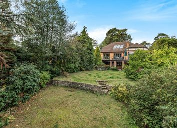 Thumbnail 5 bedroom detached house for sale in Tekels Avenue, Camberley, Surrey