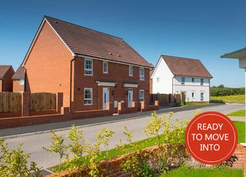 "Thumbnail 3 bedroom semi-detached house for sale in ""Barwick"" at Tenth Avenue, Morpeth"