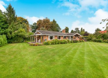 Thumbnail 4 bed detached bungalow for sale in Priory Road, Palgrave, Diss