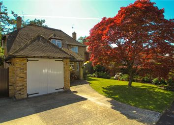 Thumbnail 3 bed detached house for sale in Maultway Crescent, Camberley, Surrey