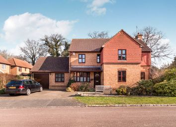 Thumbnail 4 bed detached house to rent in Dianthus Place, Winkfield Row