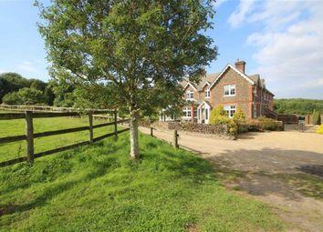Thumbnail 5 bed equestrian property for sale in Farley Heath Road, Albury, Surrey