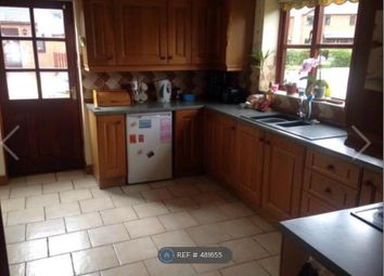 Thumbnail 3 bed detached house to rent in Cae Dafydd, Meifod