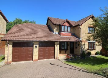 Thumbnail 4 bed detached house for sale in Briary Way, Brackla, Bridgend.