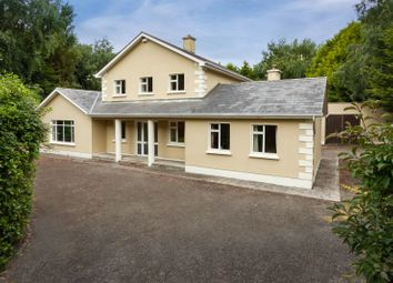 Thumbnail 6 bed detached house for sale in Killaine, Drinagh, Wexford County, Leinster, Ireland