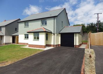 Thumbnail 4 bed detached house to rent in South Street, Sheepwash, Beaworthy