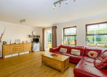 Thumbnail 4 bed detached house for sale in Lapwing Drive, Kelvedon, Colchester
