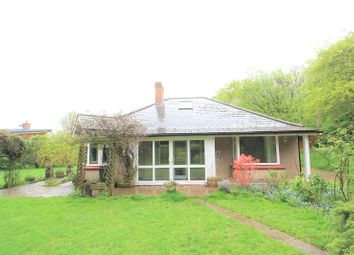 Thumbnail 4 bed bungalow to rent in Longfield Avenue, Longfield, Kent