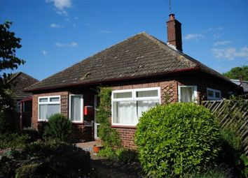Thumbnail 2 bedroom bungalow to rent in The Avenue, Snettisham, King's Lynn