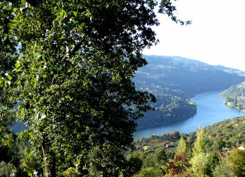 Thumbnail Land for sale in 8.000 Sqm Plot, View Of Douro River, Portugal, Marco Canaveses, Marco De Canaveses, Porto, Norte, Portugal