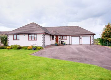 Thumbnail 4 bed bungalow for sale in Main Road, Templand, Lockerbie