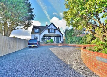 Thumbnail 4 bed detached house for sale in Mill Lane, High Salvington, Worthing, West Sussex