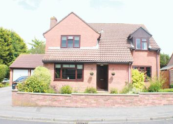 Thumbnail 4 bed detached house for sale in Heath Road South, Locks Heath, Southampton
