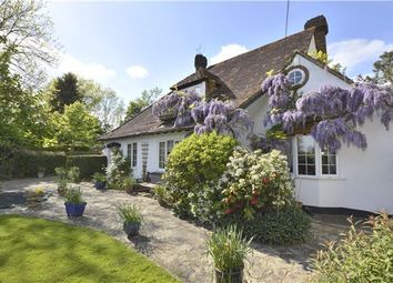 Thumbnail 4 bed detached house for sale in Norwood Hill, Horley