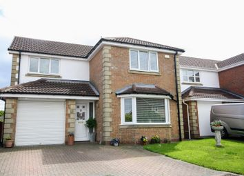 Thumbnail 4 bed detached house to rent in Aberwick Drive, Chester Le Street